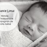 Naissance Lotus : Histoire de l'inséparable compagnon de votre bébé