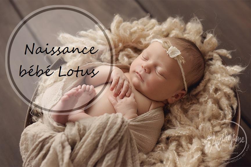 Naissance d'un bébé lotus : la 4ème merveille | Cocoon Bien Naître